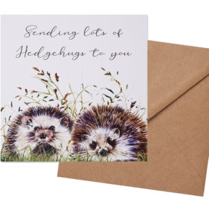 Sending Hedgehugs Card