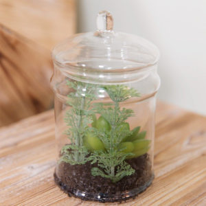 Clear Glass Jar Terrarium With Artificial Succulents - Sold by Corzo and Wood